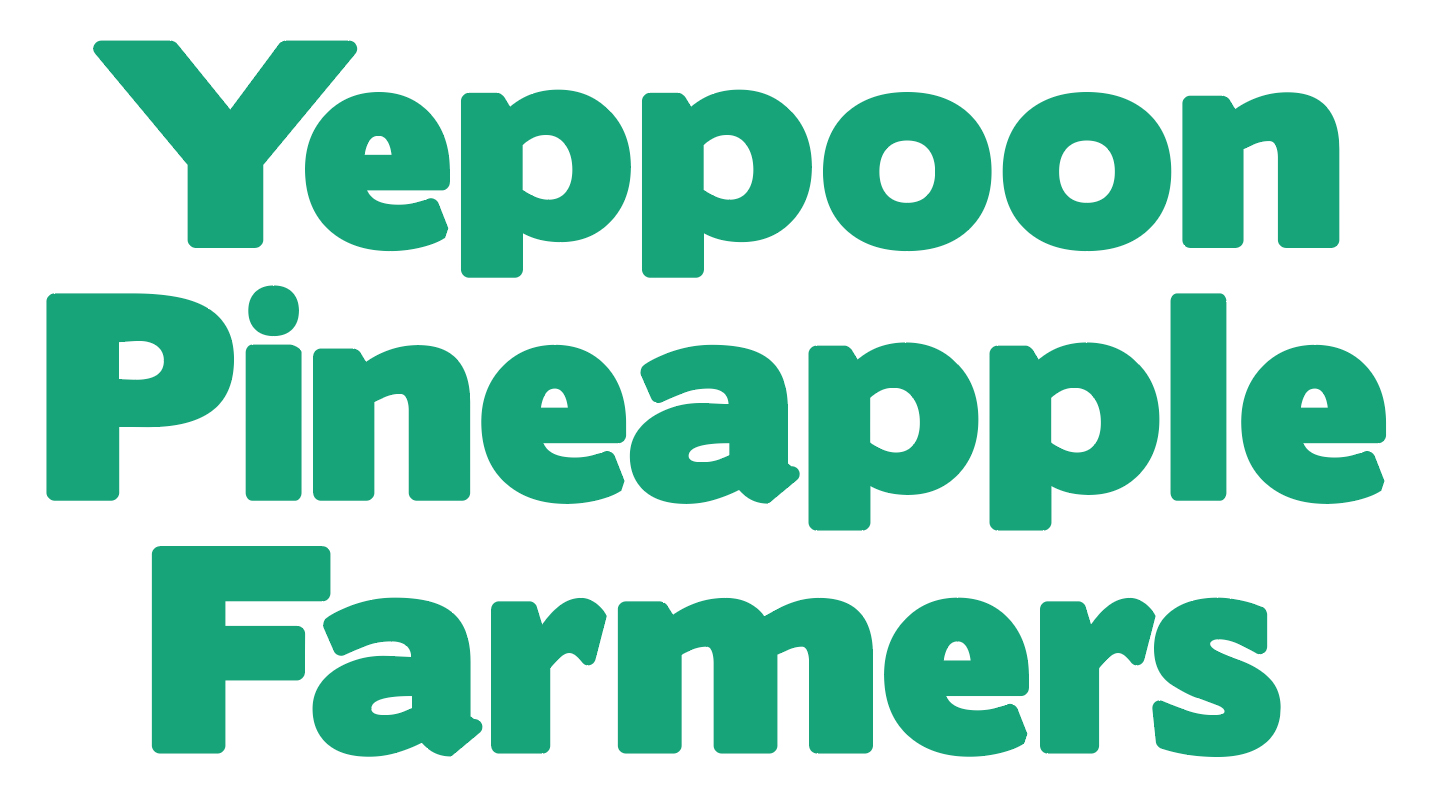 Yeppoon Pineapple Farmers